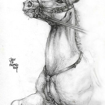Early 20th Century Cavalry Horse in Pencil by justaholmesboy