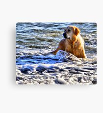 Suppose You Thought That Was Funny............ Canvas Print