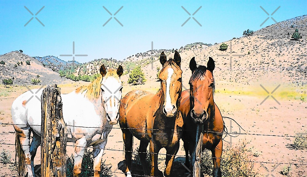 Three Amigos by Betty  Town Duncan
