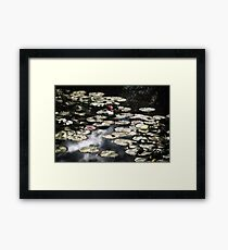 Giverny Framed Print