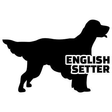 English Setter by Designzz