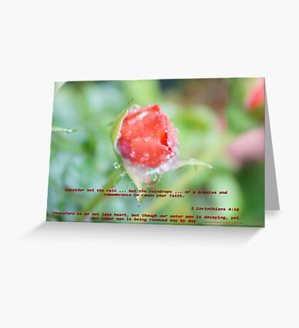 A reminder in faith and renewal ... All Rights Reserved Lei Hedger Photography Greeting Card