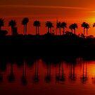 Harbor Sunset by aaronarroy