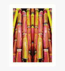 fresh sugarcane Art Print
