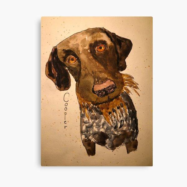 Cooper Canvas Print