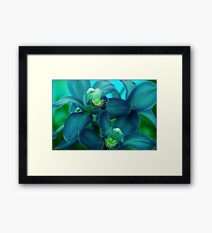Dreams in Blue Framed Print