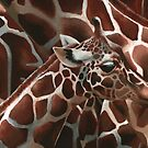 Spotted (Giraffe) by NoelleMBrooks