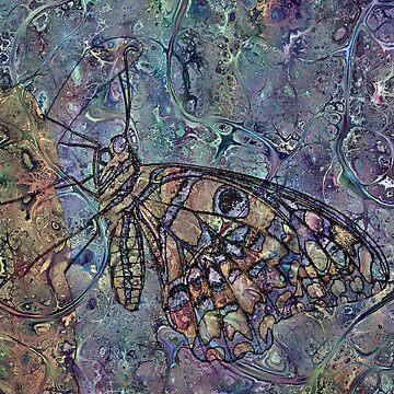 Lepidoptera 11 by RichardMaier