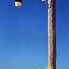 Hello Lampost by Ruth Eiseman (Schloss)