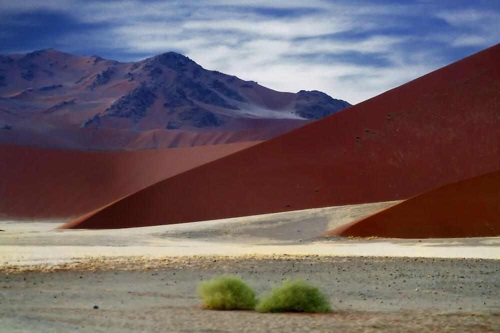 Naukluft mountains  by areyarey