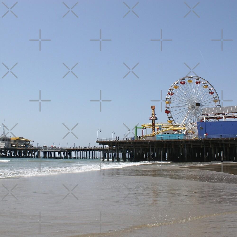 Santa Monica Pier Photo by stine1