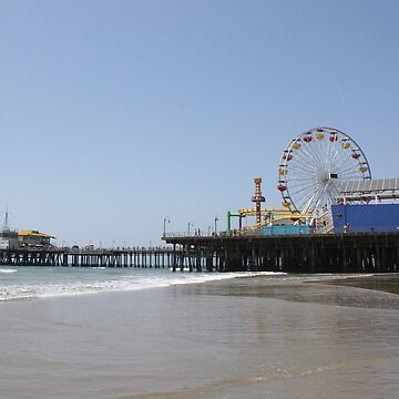 Santa Monica Pier Photo by stine1