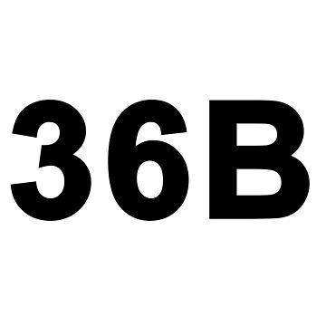 36B by ProBEST