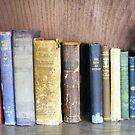 Old Volumes by raindancerwoman