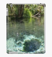 Seven Sisters Florida freshwater springs iPad Case/Skin