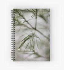 Precision/Evergreen Spiral Notebook