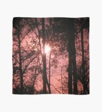 Pink Sunset in the Trees Scarf