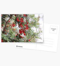 Merry Postcards