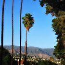 Scenes from Cali VI by PJS15204