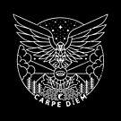 Carpe Diem by rfad