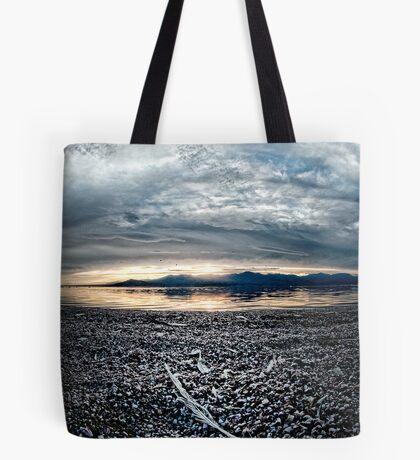 Feather on the Shore: Salton sea Tote Bag