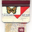 Butterfly Emerges by Michael Douglas Jones