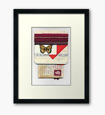 Butterfly Emerges Framed Print