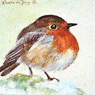 Robin by Rineke de Jong