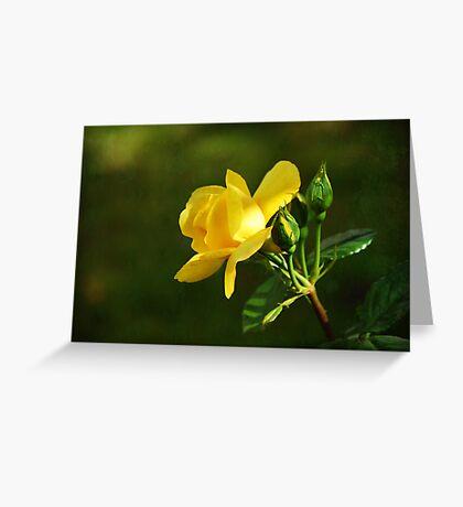 friendship flower Greeting Card