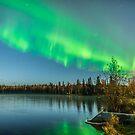 Aurora Hunters Achieve Success by Aaron Lojewski