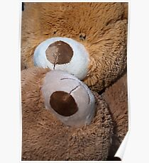 Face to Face Snuggle Bears Poster