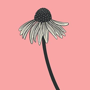 Design 68 / 365 - Coneflower by divafern
