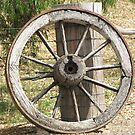 Wagon Wheel by ScenerybyDesign