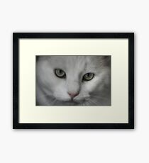 Furry Little Monster Framed Print