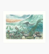 The Cambrian Art Print
