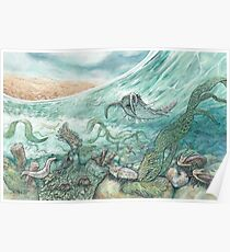 The Cambrian Poster