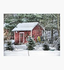 Little Red Garden Shed Photographic Print