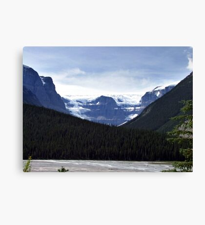Mt. Kitchener and Friends Canvas Print
