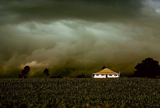 Storm on the Rise by Holly Kempe
