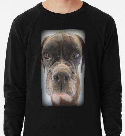 Gibt es Choc Cookies in dort? - Boxer-Hunde-Reihe Leichtes Sweatshirt