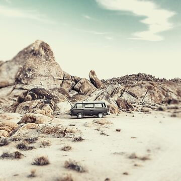 Joshua Tree Living by CaliforniaPhoto