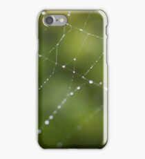 Spider Web in Green  iPhone Case/Skin