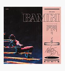 hippo campus bambi Photographic Print