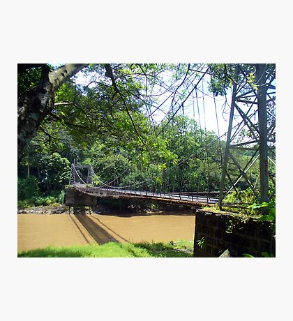 Hanging bridge  Photographic Print