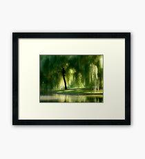 301 Framed Print