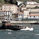 Barco Rabelo  by Diana F. Sá