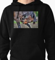No Flies on Me Pullover Hoodie