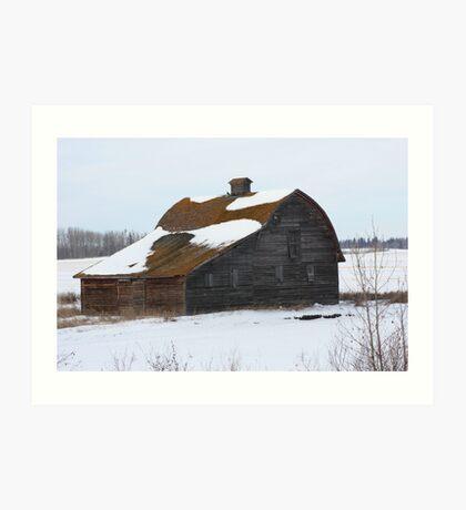 Lonely Prairie Barn   Art Print