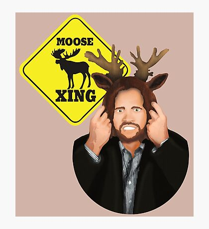 Moose Crossing Photographic Print