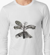Euphorbia Milii Flower Drawn in Pen and Ink Long Sleeve T-Shirt